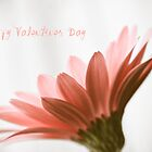 Valentine Daisy by Hilary Walker