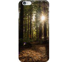 Redwood Forest - Whakarewarewa, New Zealand iPhone Case/Skin