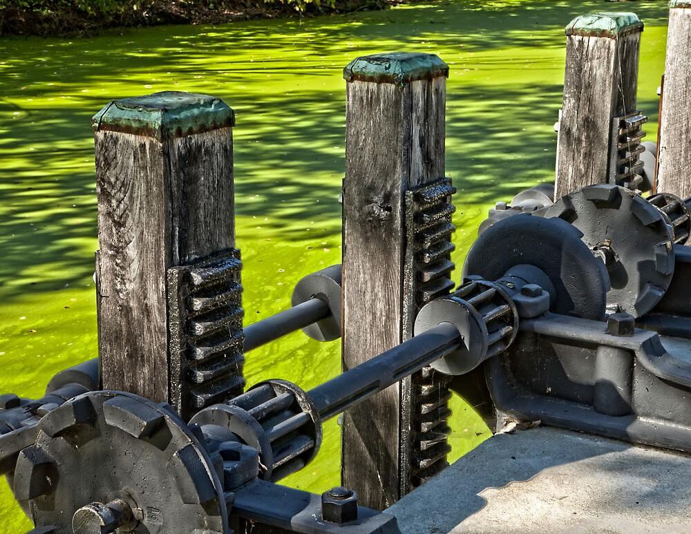 Single Gear Gate Hoist Operator by Stephen Cross Photography