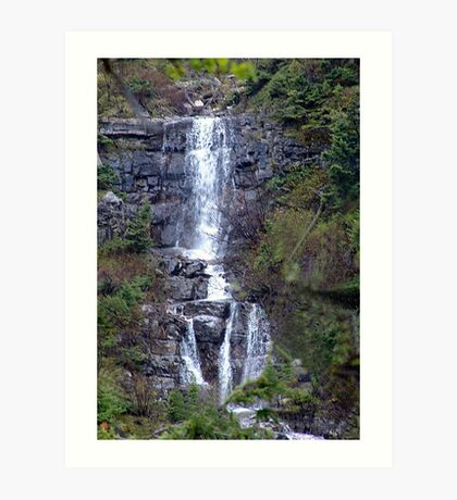 Delicate Waterfall Art Print
