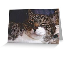 Nap Time Approaches Greeting Card