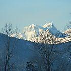 Hazelton Mountains Peeking by Ted Widen
