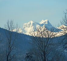 Hazelton Mountains Peeking by Ted Widen