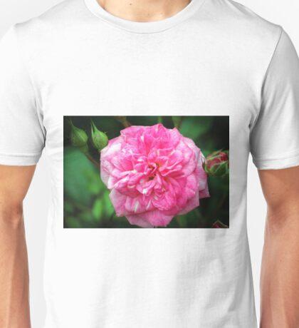 Pink Delight Unisex T-Shirt