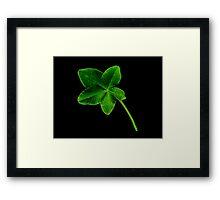 Luckier than Lucky -+ 5 Leaf Clover! Framed Print
