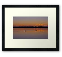Morning Glide.....22-1-11. Framed Print