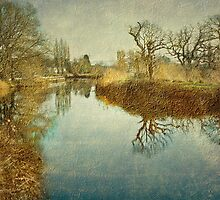 The Exeter Ship Canal by Catherine Hamilton-Veal  ©