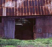 An Old Barn in Michigan by Phil Campus
