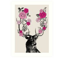 The Stag & Roses Art Print