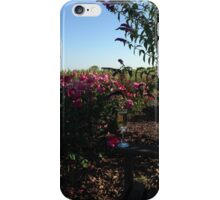 Champagne in the Roses iPhone Case/Skin