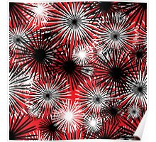 black and white firecracker floral Poster