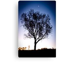 Moon above tree - Uluru Canvas Print