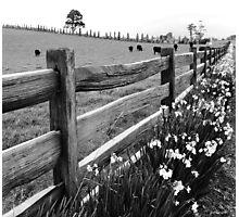 Post and Rail Photographic Print
