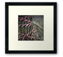 The Pink Tape Framed Print