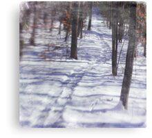 Wetlands Trail Canvas Print