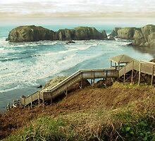 Ocean Lookout by BPhotographer
