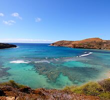 """Hanauma Bay"" by rnphotography"