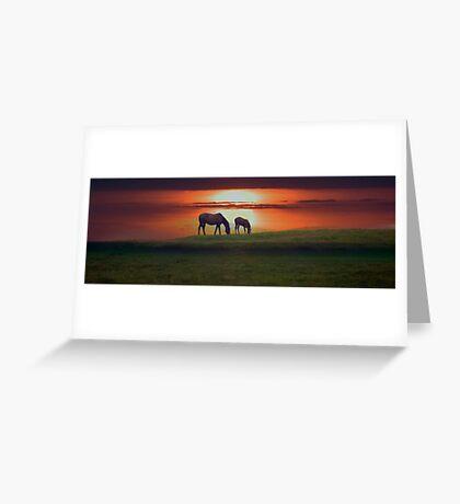 Sunset horses Greeting Card