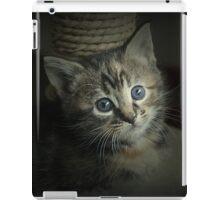 A Bundle of Fluffs iPad Case/Skin
