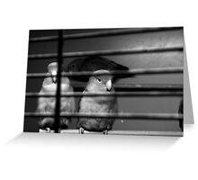 Pet Shop Boys Greeting Card