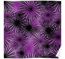 black and purple firecracker floral Poster