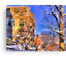 Just another winter day! Canvas Print