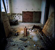 precautionary measures III - holga - factory findings by iannarinoimages