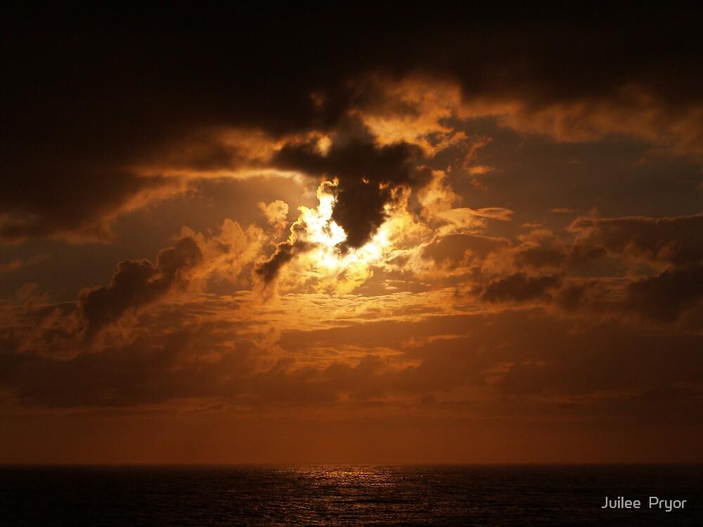 Morning Glory by Juilee  Pryor
