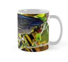 Green Heron Bird Mug