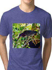 Green Heron Bird Tri-blend T-Shirt