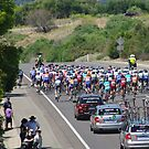 Cycling The Tour Down Under in South Australia -and there they go  by janfoster