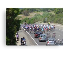 Cycling The Tour Down Under in South Australia -and there they go  Metal Print