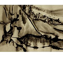 ancient vines... down in the vineyard Photographic Print
