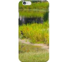 RESTING ON LABOR DAY iPhone Case/Skin