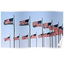 Stars & Stripes in Formation Poster