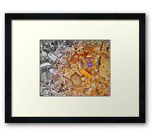 Kate Hutchinson's 'She Sells Seashells By The Seashore' Framed Print