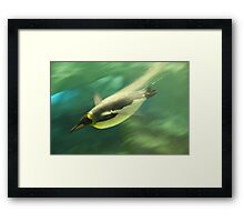 Diving Penguin Framed Print