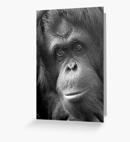 """Pensive Primate"" - orangutan portrait Greeting Card"