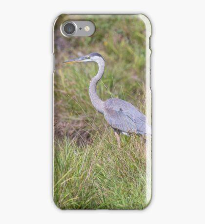 A lone Great Blue Heron iPhone Case/Skin