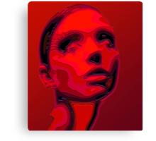 Portraet sliced Canvas Print