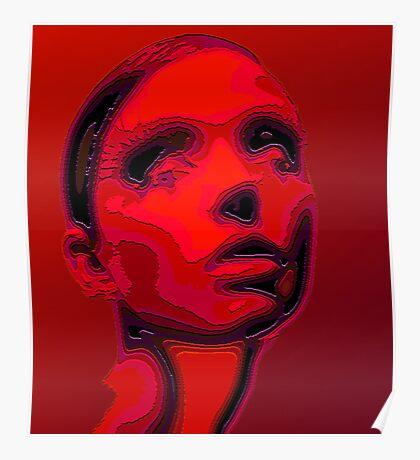 Portraet sliced Poster