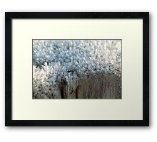 Fascinating ice crystals 3 Framed Print