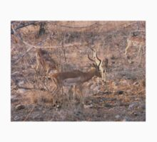 Impala Herd, Limpopo, South Africa Kids Tee