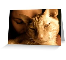 Leo Love - a cuddly kitty Greeting Card