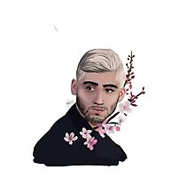 Zayn-cherry blossoms  Photographic Print