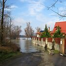 Flood of River Danube, Sződliget, Hungary, 2011 January by ambrusz