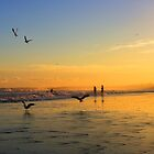 Seagull Sunset by Tyhe  Reading