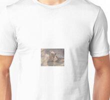 Lion Cub on Prowl, Gauteng, South Africa Unisex T-Shirt