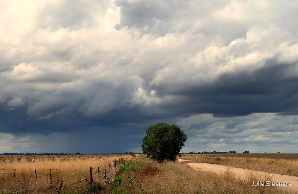 Stormy Weather #2 by Julie Sleeman