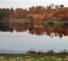 Tarn Hows - Autumn Colours by Chris Monks